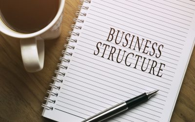 Forming a Start-up Business – Which Legal Entity to Choose?