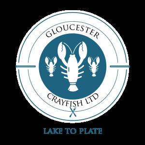 price davis accountants in stroud Gloucester Crayfish Limited